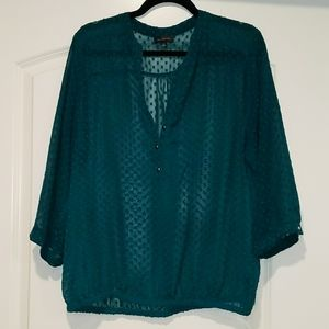 The Limited Emerald Green Sheer Blouse